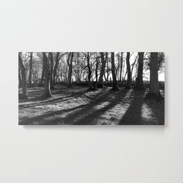 Railway Trees Metal Print