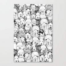 just alpacas black white Canvas Print