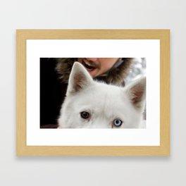 hasky  Framed Art Print