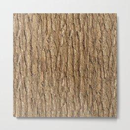 Bark of elm Metal Print