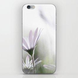 daisy do iPhone Skin