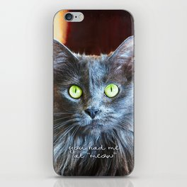 """""""You had me at 'meow'"""" quote cute, fluffy grey cat close-up photo iPhone Skin"""