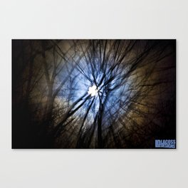 Pulling Light Canvas Print