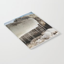 T Rex in Ice Notebook