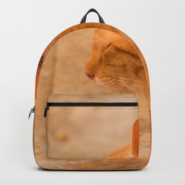 Orange Cat Is Resting On The Terrace  #decor #society6 #homedecor Backpack