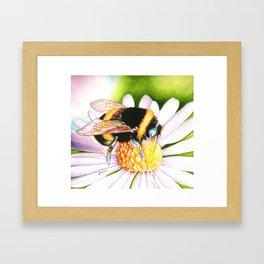 Joie 2 Framed Art Print