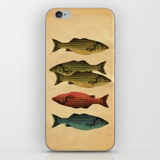 One fish Two fish... iPhone & iPod Skin