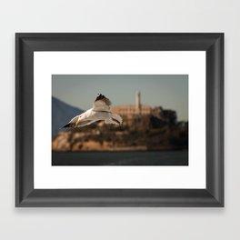 Alcatraz Freedom Framed Art Print