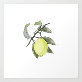 Original Lemon Watercolor Painting #2 Art Print
