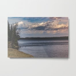Everything Left Unknown Metal Print