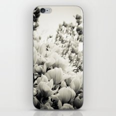 A Waterfall of Flowers iPhone & iPod Skin