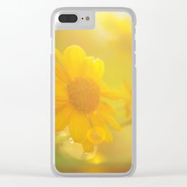 sunny evenings Clear iPhone Case