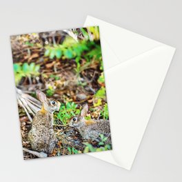 Two Wild Rabbits Stationery Cards