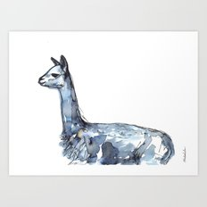 Vicuna Watercolor Sketch Art Print