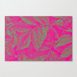 Tropica I Canvas Print