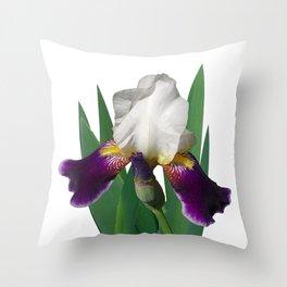 Violet and white Iris 'Wabash' Throw Pillow