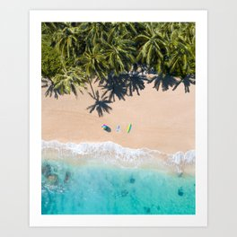 Picture Perfect Paradise Art Print