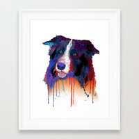 border collie Framed Art Prints featuring Border Collie by Marlene Watson