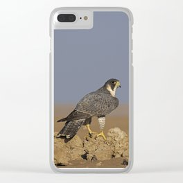 Falcon Scape Clear iPhone Case