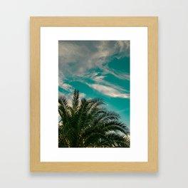 Palms on Turquoise - II Framed Art Print