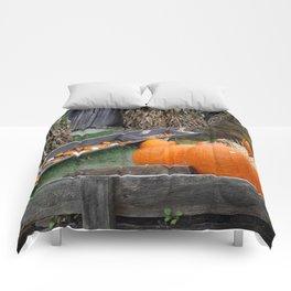 Pumpkin Patch Comforters