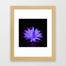 Loving light.... Framed Art Print