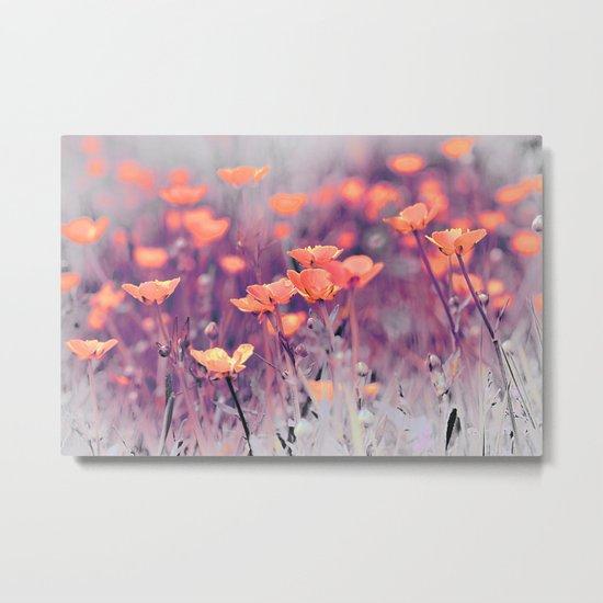 Summer Meadow. Metal Print