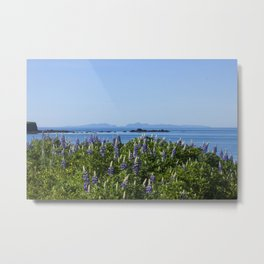 Scenic Alaskan Photography Print Metal Print