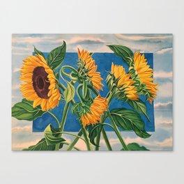 Sunny Skies Canvas Print