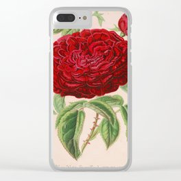 Rose Victor Trouillard Vintage Botanical Floral Flower Plant Scientific Clear iPhone Case
