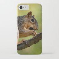 zen iPhone & iPod Cases featuring Zen by IowaShots