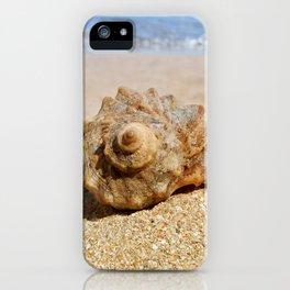 whelk on the beach iPhone Case