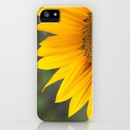 Helianthus iPhone Case