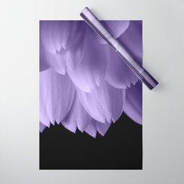 Ultra violet purple flower petals black Wrapping Paper