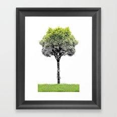 Rooted Sound V (clarinet) Framed Art Print