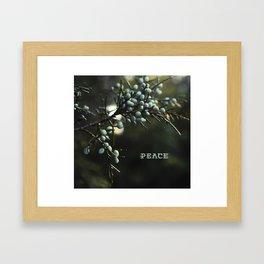 Peace Berries Framed Art Print