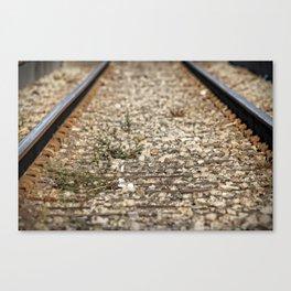 Train Tacks Canvas Print