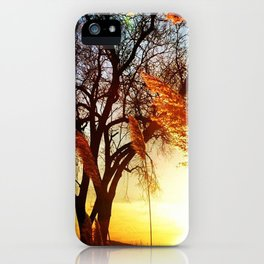 Marshy Sunset iPhone Case
