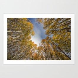 Fall in Bend Art Print