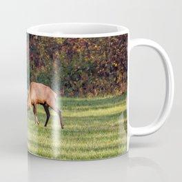 Elk Sparring Great Smoky Mountains Coffee Mug