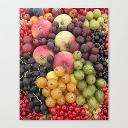 Five a Day Canvas Print