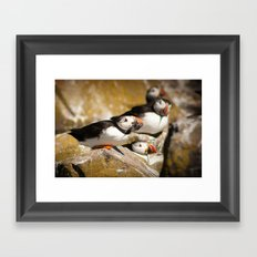 Puffin with Lunch Framed Art Print