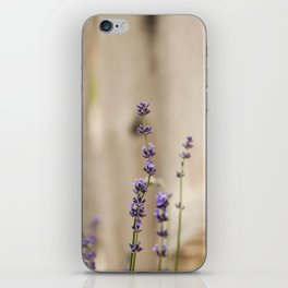 Lavender Buds and Blooms iPhone Skin