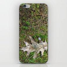 Oak Leaf iPhone & iPod Skin