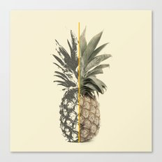 Double Pineapple Canvas Print