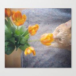 Tulip Friend Canvas Print
