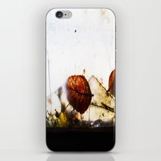 Broken iPhone & iPod Skin