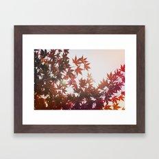Fire Leaves Framed Art Print