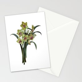 Lent Lily Isolated Stationery Cards