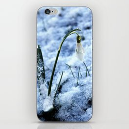 First sign of spring iPhone Skin